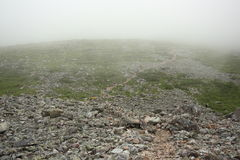 Trail and Fog on Gros Morne Mountain Stock Photos