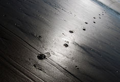 Trail of footsteps Stock Photos