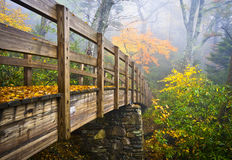trail för kant för appalachian fall för höst blå fotvandra Arkivbild