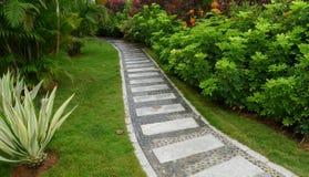 Trail in garden Stock Photo
