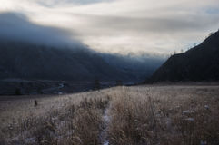 The trail through the grass field covered with frost at dawn, Altai Royalty Free Stock Image
