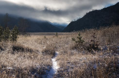 The trail through the grass field covered with frost at dawn, Altai mountains, Siberia, Russia. Stock Image