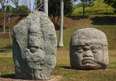 Trail and head. As part of the olmec art, in veracruz, tabasco, mexico Royalty Free Stock Images