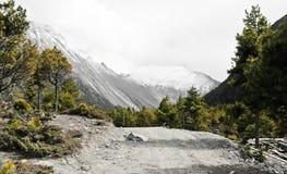 Trail hig up in Annapurna / Himalaya royalty free stock photos