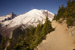 Trail High on Burroughs Mountain Cascade Range Mt. Rainier Backg Royalty Free Stock Photography