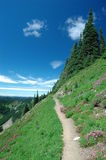 Trail in high elevation Stock Images