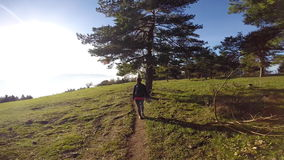 Trail hiker POV. Trail hiker in nature active woman stock video footage