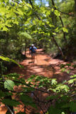 Trail Hiking. Hiker coming down the trail Stock Images
