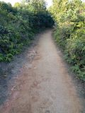 Trail on hill. Photo on 1 Feb 2017 in Tai Tam Royalty Free Stock Images