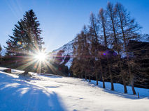 A trail in Klosters Royalty Free Stock Photography