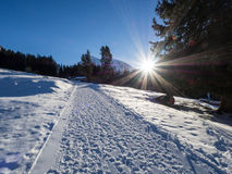 A trail in Klosters Royalty Free Stock Images