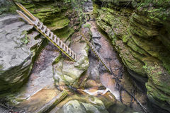 Trail Ladders in Bear Hollow. Ladders have been a part of the trail for decades in Bear Hollow at Indiana's Turkey Run State Park royalty free stock image