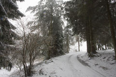 Trail and landscape of snowy Vosges mountains, France Stock Photography