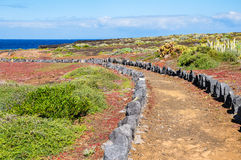 Trail through the landscape of Tenerife, Canary Islands Royalty Free Stock Photos