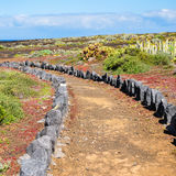 Trail through the landscape of Tenerife, Canary Islands Stock Images