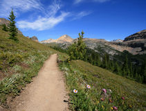 Trail Leading to Cirque Peak Royalty Free Stock Photography