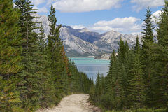 Trail Leading to a Mountain Lake - Alberta, Canada Royalty Free Stock Photos