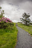 Trail Leaving Carvers Gap Royalty Free Stock Photo