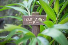 Trail Marker Sign. Wood trail marker sign surrounded by beautiful green foliage and leaves royalty free stock image