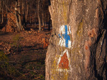 Trail markings on a tree. Two different trail markings on a tree showing the path in the forest Stock Photos