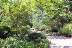 A trail meanders through the woods. At the Albuquerque Zoo Royalty Free Stock Photos