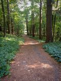 Trail at Mirror Lake State Park in WI royalty free stock image