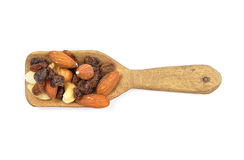 Trail mix on shovel Stock Images