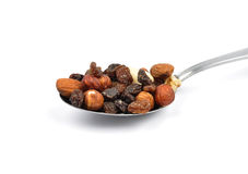 Trail mix on spoon Stock Images