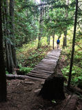 Trail Mountain Biking Royalty Free Stock Images