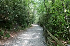 Secret North Carolina. The trail in the mountain invite us to discover further and meditated in harmony with  nature listening to the song of the birds Royalty Free Stock Photos