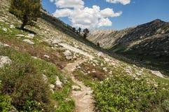 Trail in Mountain terrain Stock Image