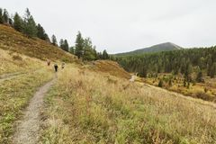 Trail in mountain walley. Altai trekking. Trail in mountain walley. Trekking in Altai Royalty Free Stock Images