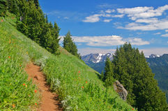 Trail in the mountains Royalty Free Stock Photography