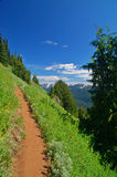 Trail in the mountains Stock Image