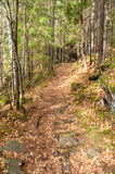 The trail in the mountains Royalty Free Stock Photography