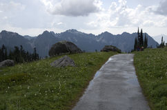 Trail in Mt. Rainier National Park Royalty Free Stock Photography