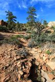 Trail near Bryce Canyon National Park Stock Photos