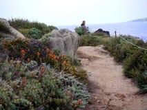 Trail near the ocean Royalty Free Stock Photo