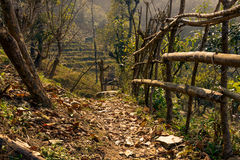 Trail in Nepal Royalty Free Stock Images