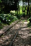 Trail Of Small Train In Gongqing Forest Park Stock Image