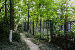 Trail outside fence in spring Royalty Free Stock Photography