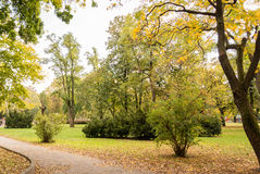 Trail in the park in autumn. Trail in the park surrounded by golden and green trees in autumn Royalty Free Stock Images