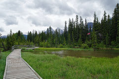 Trail in park in Canmore, Alberta, Canada. Stock Images