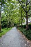 Trail in the park with green trees. In Berlin Royalty Free Stock Image