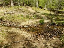 Trail or path with mud and water or stream. Or creek royalty free stock image