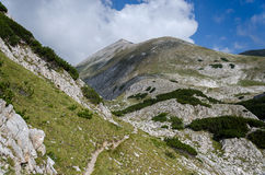 Pirin national park, Bulgaria. Summer scenery of trail path to Kutelo peak in Rila mountain, Bulgaria Stock Photo