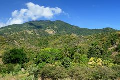 Trail into Pico Turquino tops. Trail for the highest peak of Cuba - Pico Turquino in the mountains Sierra Maestra royalty free stock photos