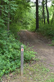 Trail with red arrow marker Stock Photo