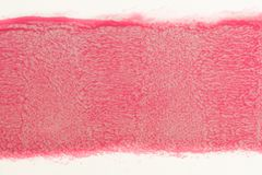 Trail of red paint from roll for painting on wall. Repair concept royalty free stock photos