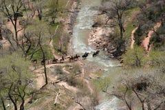 Trail Ride. Horseback Ride through Zion National Park Royalty Free Stock Photo